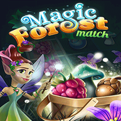 Magic Forest Match