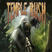 Temple Rush bestellen!