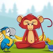 Kids Zoo Day bestellen!