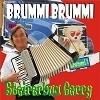 Steirerbua Gerry - bist du net mei Bärli