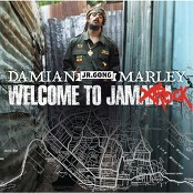 Damian Marley & Paul Fakhourie - We're Gonna Make It (Album Version)