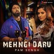 Pam Sengh - Mehngi Daru bestellen!