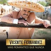Vicente Fernndez - No Me Platiques Ms
