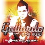 Gallardo feat. Rob Elias - Como Estas ! (Mi amor)