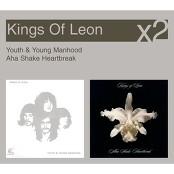 Kings Of Leon - Molly's Chambers