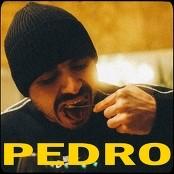 Bispo X D'ay - Pedro bestellen!