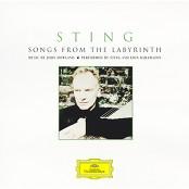 Sting & Edin Karamazov - Come Again