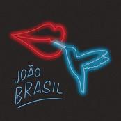 Joo Brasil feat. Bateria da Beija-Flor - Eu Vou Beijar Essa Flor bestellen!