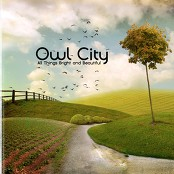 Owl City - Hospital Flowers