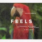 Calvin Harris feat. Pharrell Williams, Katy Perry & Big Sean - Feels