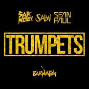 Sak Noel & Salvi - Trumpets (Radio Mix) bestellen!