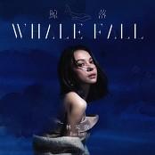 Bae Lin - Whale Fall bestellen!