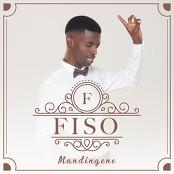 Fiso - Mandingene