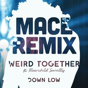 Weird Together feat. Moonchild Sanelly - Down Low (Mace Remix)