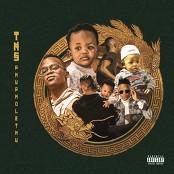 TNS feat. LaSauce - Mnganami bestellen!