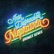 Ania Dabrowska - Nieprawda (Gromee Remix) bestellen!