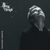 Surganova i Orkestr - Volchitsa bestellen!