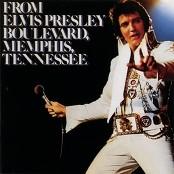 Elvis Presley - Never Again