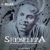 Dr Malinga feat. Beat Movement - Shebeleza bestellen!