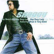 Shaggy - Hey Sexy Lady (Album Version)