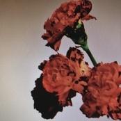 John Legend - Made to Love