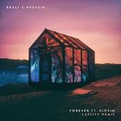 Ekali & Medasin - Forever (feat. Elohim) (Laxcity Remix)