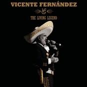Vicente Fernández - Me Quedan Todas