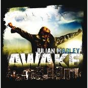 Julian Marley - A Little Too Late (Album Version)