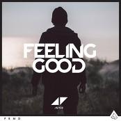 Avicii - Feeling Good (Intro)
