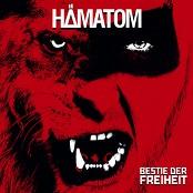 Hmatom - Ich hasse dich zu lieben